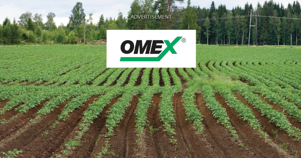 Photo of a potato field with the OMEX logo and the word advertisement